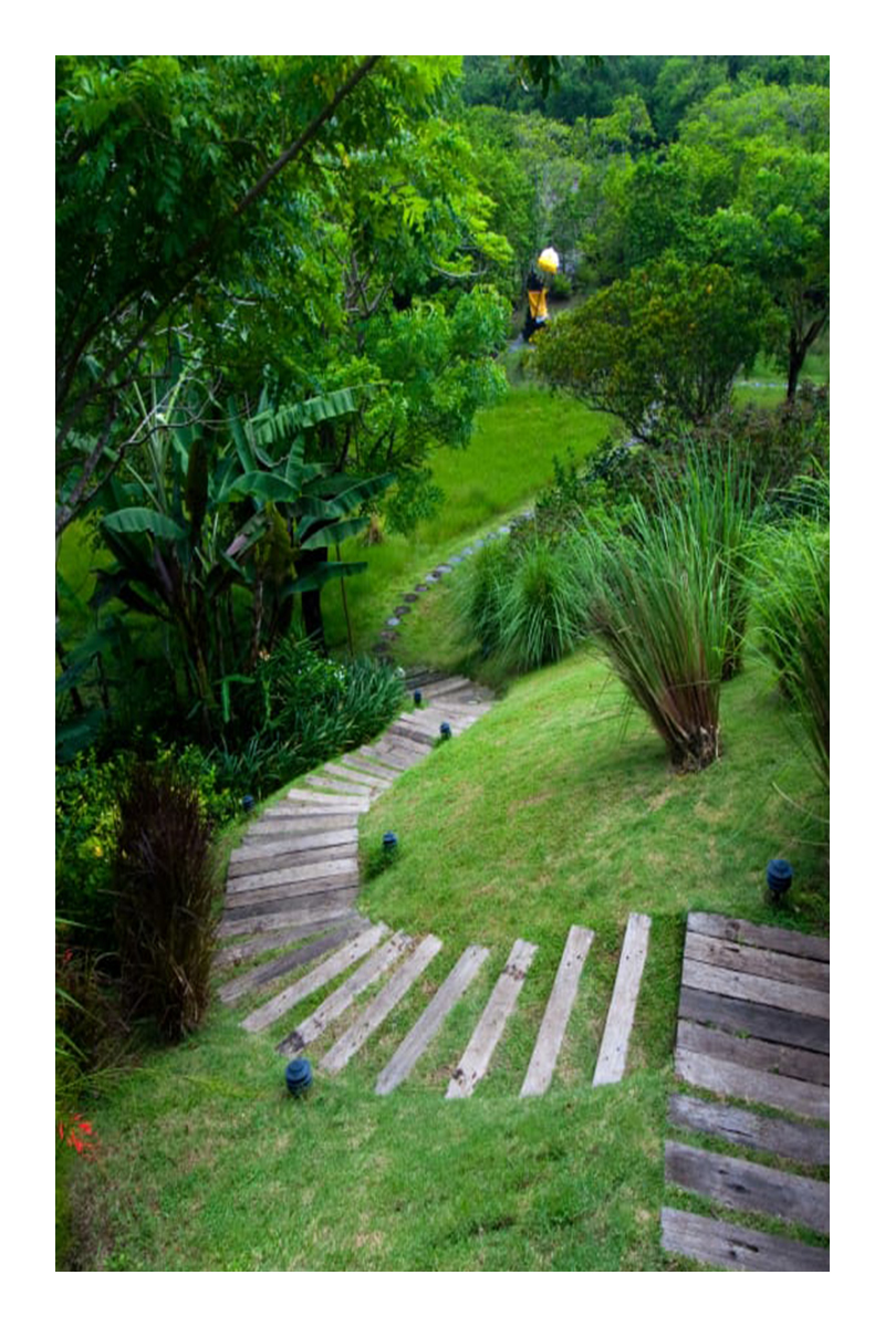 garden ideas tropical