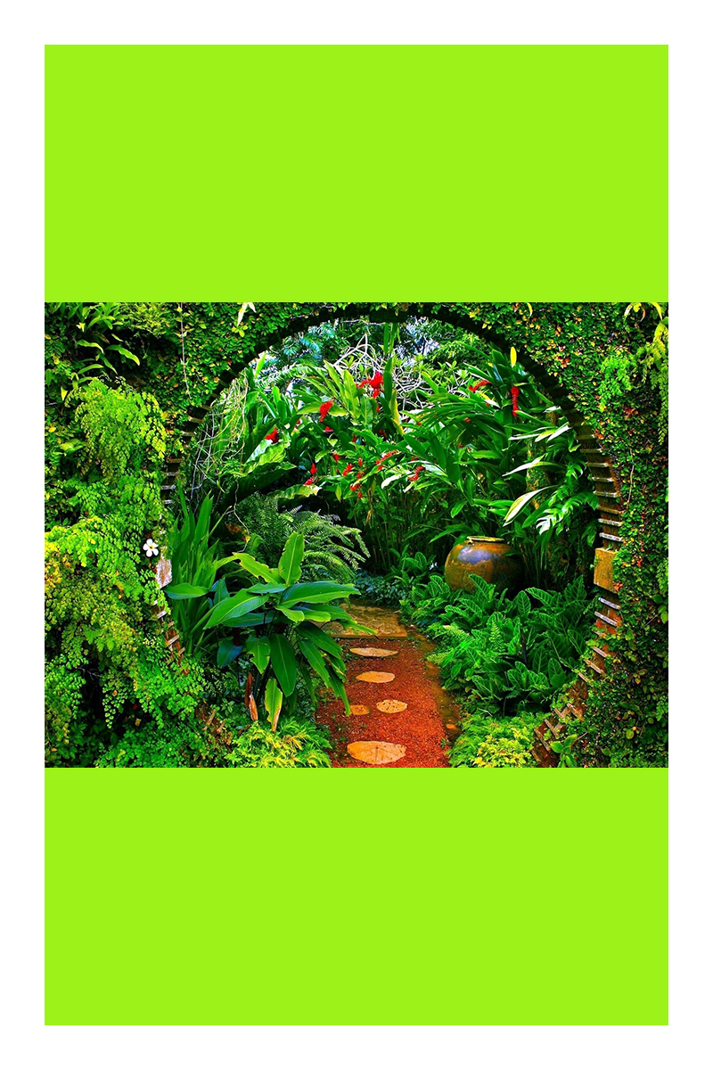 tropical garden ideas uk
