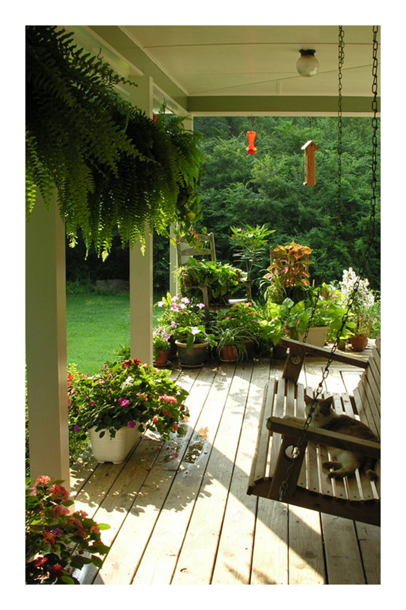 good ideas for the entrance to a tropical garden