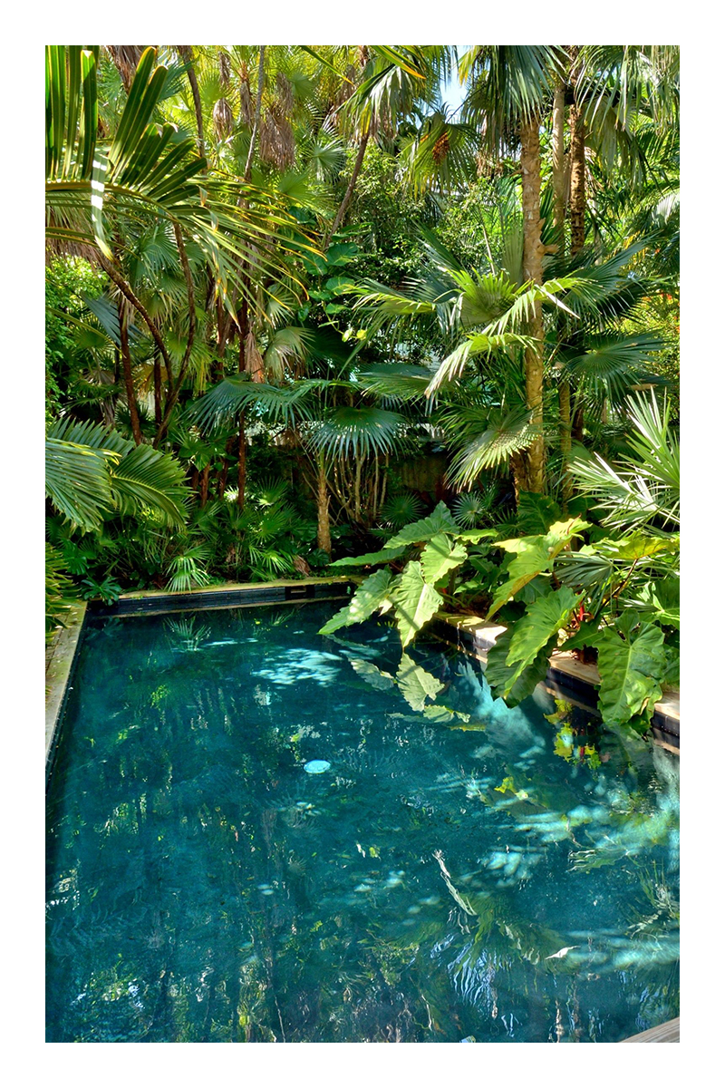 small tropical garden landscaping ideas