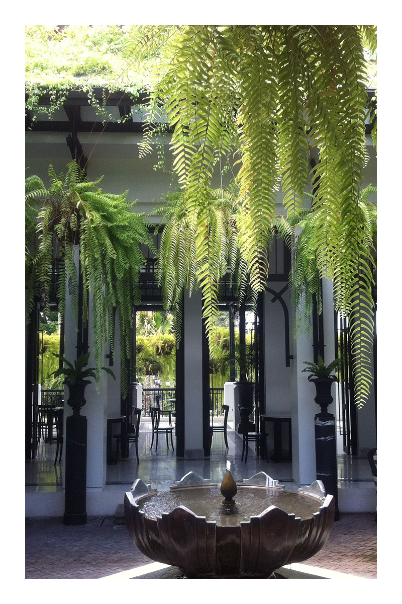 tropical garden ideas california