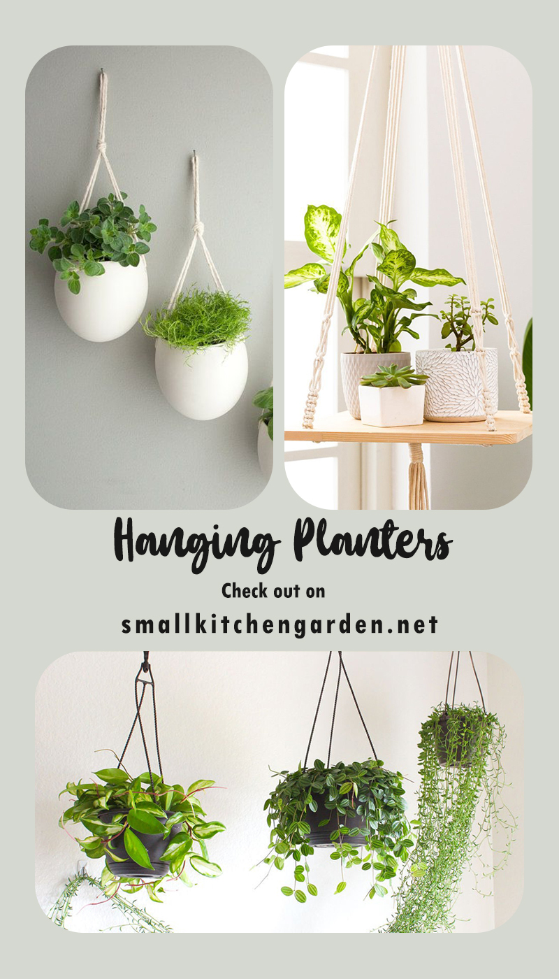 30 Hanging Planter Ideas to Decorate your Dream House