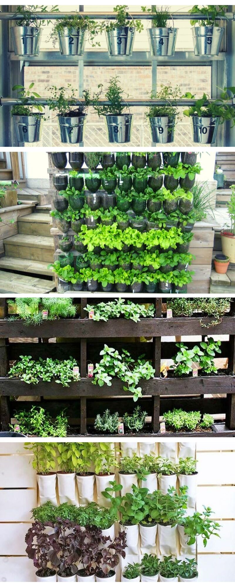 DIY Garden Ideas